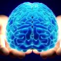 هل حقا نستخدم 10% فقط من قدراتنا العقلية ؟
