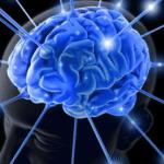 هل يساعدك علم الأعصاب لتكون أكثر ذكاءً