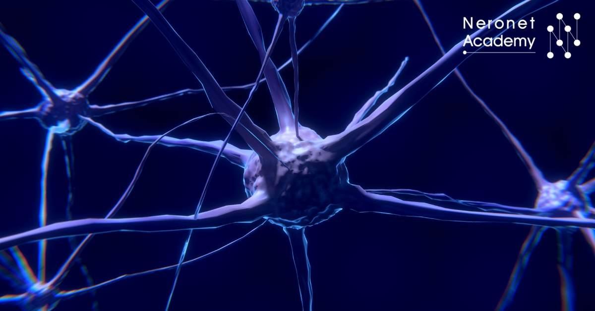 اكتشاف العلاقة بين الفوتونات الحيوية في الدماغ والوعي المرتبط بالضوء