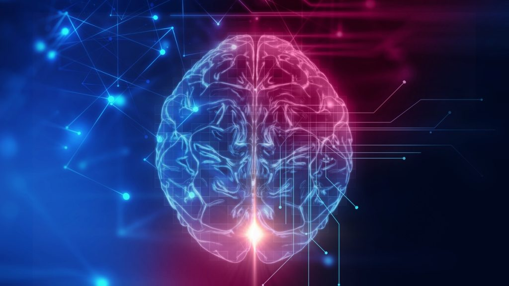 الإنسان الواعي صاحب العقل الناضج والفكر المستنير،