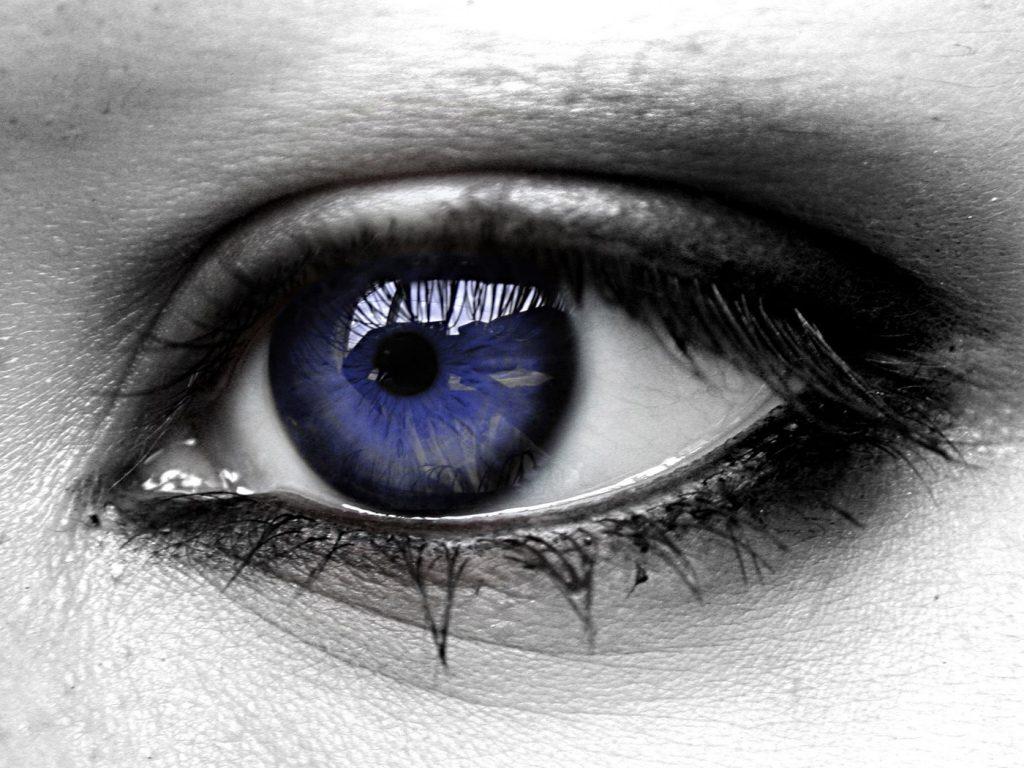 البصر