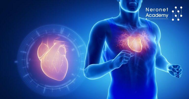 كيف تؤثر التمارين الرياضية على عضلة القلب؟