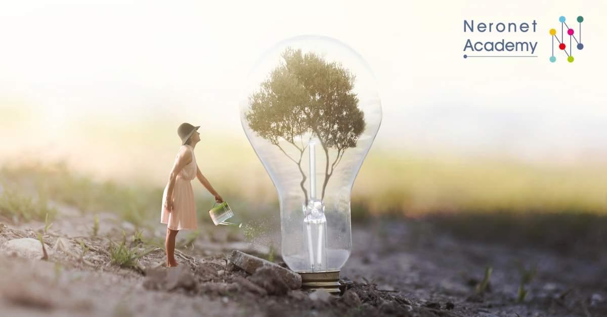 إدارة الطاقة في حياتك