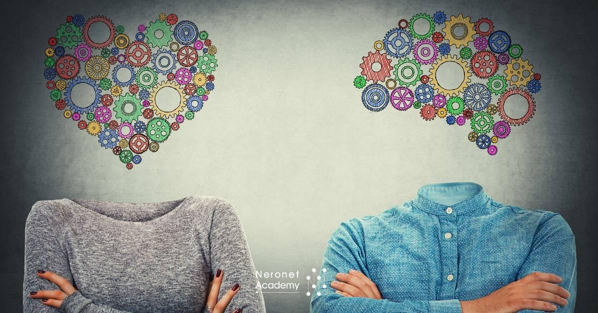 تناقضات: بين العقل والقلب