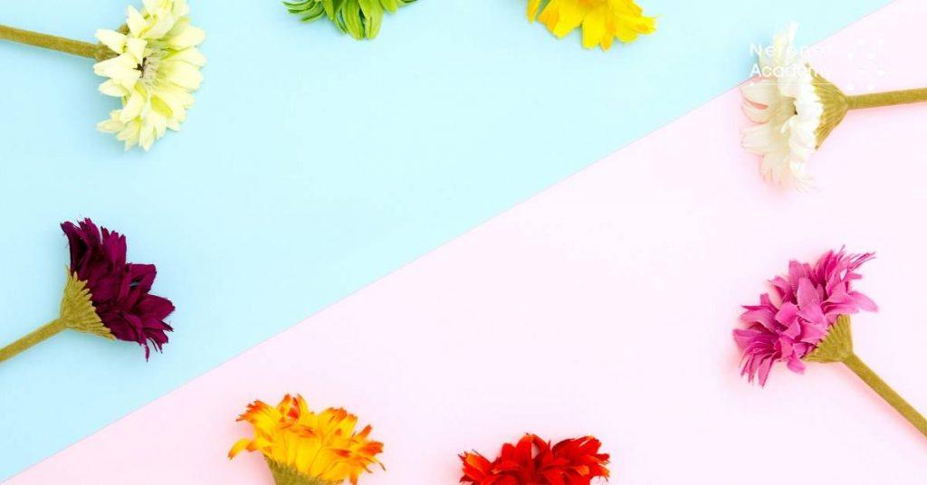 therapy أسرار وتأثيرات العلاج بالألوان